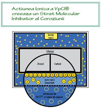 Actiune molecule VpCI